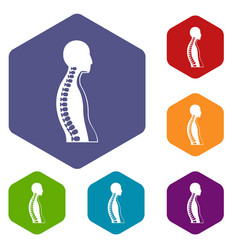 Human spine icons set hexagon vector