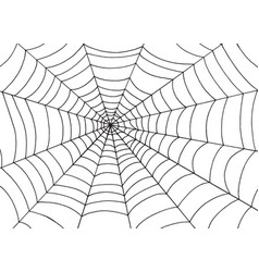 spider web background doodle sketch art vector image