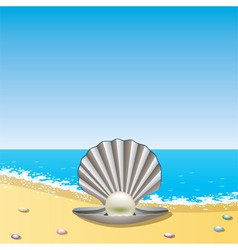 vector opened sea shell with pearl on the sea shor vector image