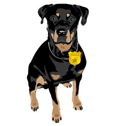 black dog vector image