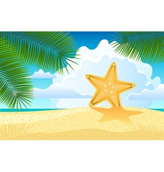 Starfish on the beach vector