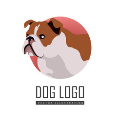 Bulldog dog logo on white background vector
