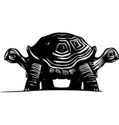 Double Turtle vector image