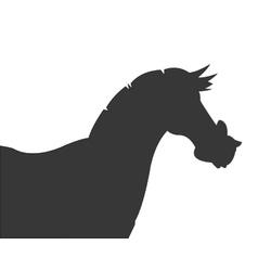 Horse cartoon silhouette icon vector
