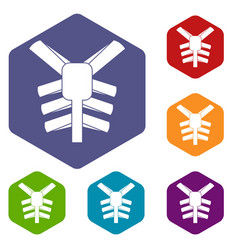 Human thorax icons set hexagon vector