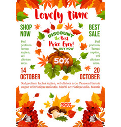 sale banner with autumn leaf fall season pumpkin vector image