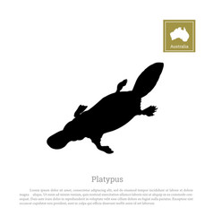 black silhouette of platypus on a white background vector image