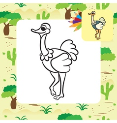 Ostrich coloring page vector