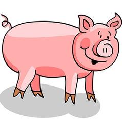Pig cartoon on white vector image
