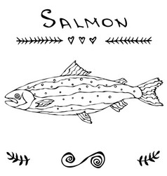 Salmon fish for fishing club or seafood sushi menu vector