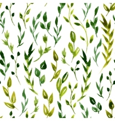 Seamless watercolor floral pattern vector