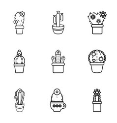 Cactus icons set outline style vector