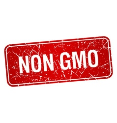 Non gmo red square grunge textured isolated stamp vector
