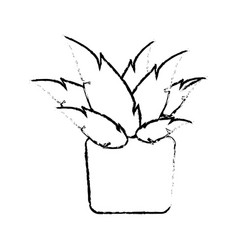 Pot plant natural decoration ecology sketch vector