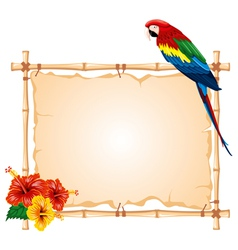 parrot sitting on a bamboo frame vector image