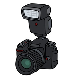 Photographic camera with a flashlight vector