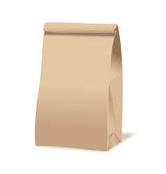 Brown paper food bag package realistic vector