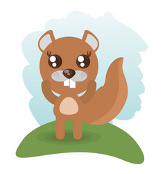 cute beaver animal wildlife vector image
