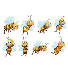 Eight bees in different positions vector image vector image