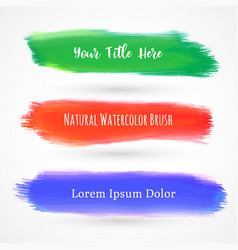 set of three watercolor brushes vector image vector image