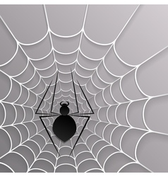 Black spider web on white on a gray background vector