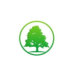Pine tree green ecology logo vector
