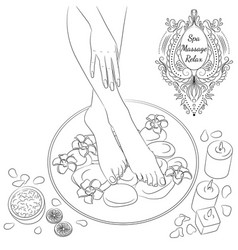 foot bath line art vector image