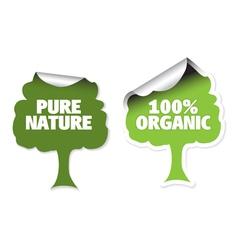 organic labels vector image