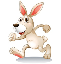 A male rabbit vector