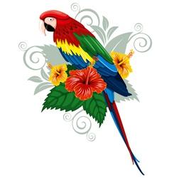 Bright parrot vector