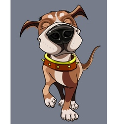 Cartoon happy dog wearing a collar walks vector