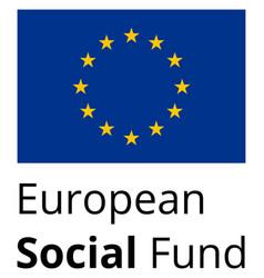 european social fund vector image