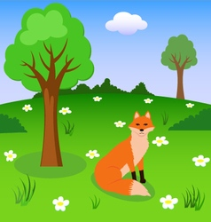 Red fox on the forest meadow vector