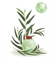 Ladybird and globe vector