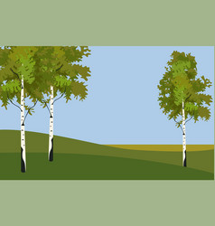 Background tree birch in springtime vector