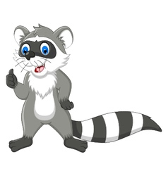 raccoon cartoon thumb up vector image vector image
