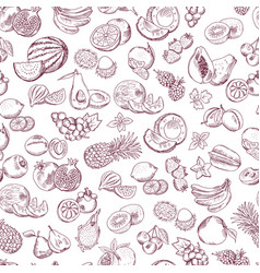seamless pattern of doodle fruits on white vector image vector image