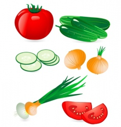 cucumber and tomato onion vector image