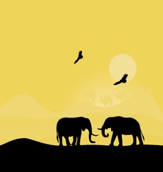 Elephants at sunset vector