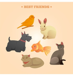 Home pets set carrot dog rabbit fish and cats vector