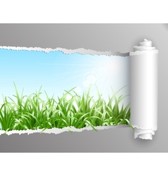 Torn paper with grass background vector