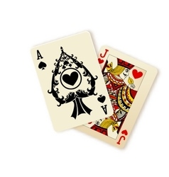 Black jack playing cards combination vector