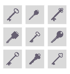 set of monochrome icons with keys vector image
