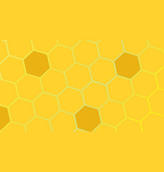 cells bees vector image