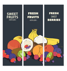 fresh fruit cards vector image