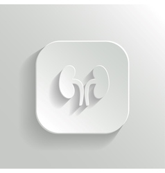 Kidneys icon - white app button vector