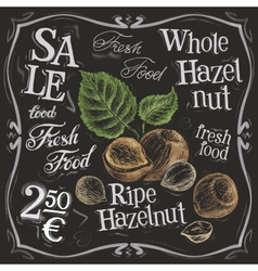 Whole hazelnut logo design template nut vector