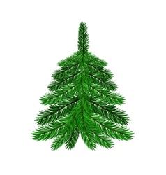 Single green fir vector