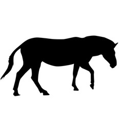 Zebra black silhouette vector