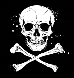 pirate black flag with skull and crossbones vector image